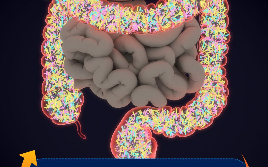 Probiotics, Prebiotics, Microbiome? What do they mean?